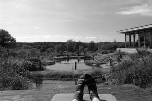 The studio and koi pool