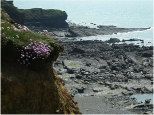 bude cliff