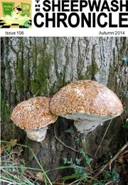 Autumn issue, October 2014