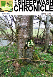 Spring issue, April 2016